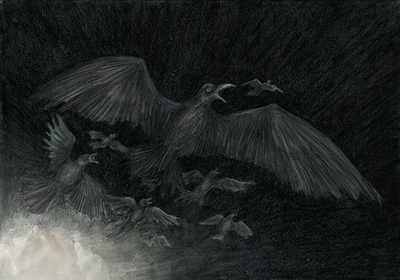 The Colour out of Space Chapter 1 Illustration - Birds in Panic by Andreas Hartung