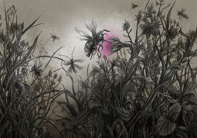 The Colour out of Space Chapter 1 Illustration - Meadow with insects sucking on plants with strange colour by Andreas Hartung